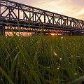 #most #Tczew