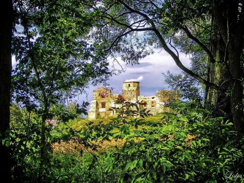 dla videll.Zamek siewierski #architektura #zabytki #zamki