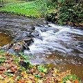 Sajna,Reszel #lasy #natura #rzeki