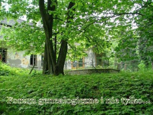 Forum genealogiczne i nie tylko...