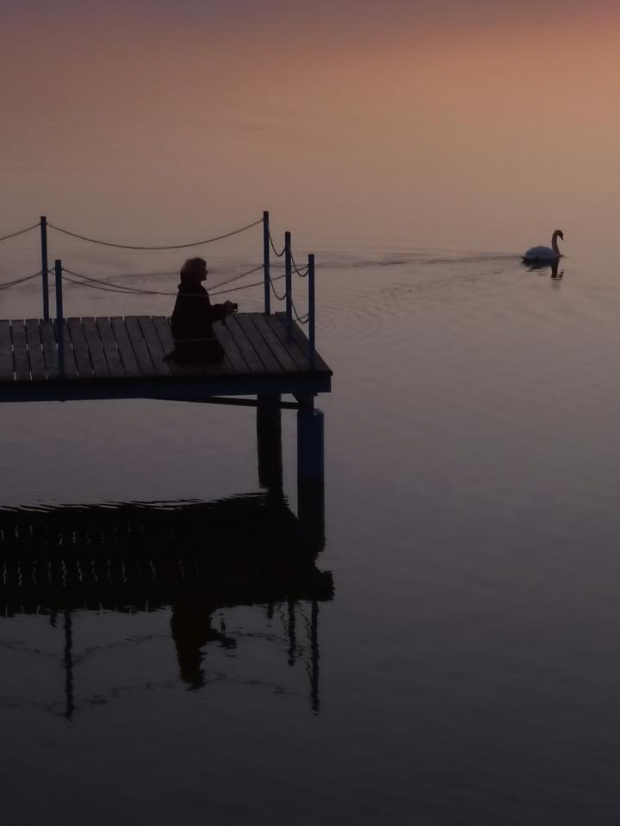 ...sama, a jednak nie sama #nastrój #woda #łabędź #modlitwa