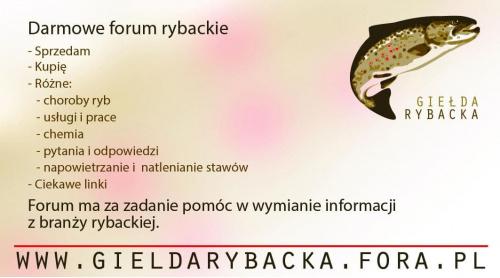 Forum Giełda Rybacka Strona Główna