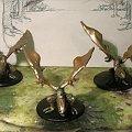 Wywerny2 #Dragons #Dungeons #Figurki #Goblin #Grinch #kobolds #koboldy #Lochy #miniatures #Ręczne #Smoki #WiwernaHandmade #Wyvern