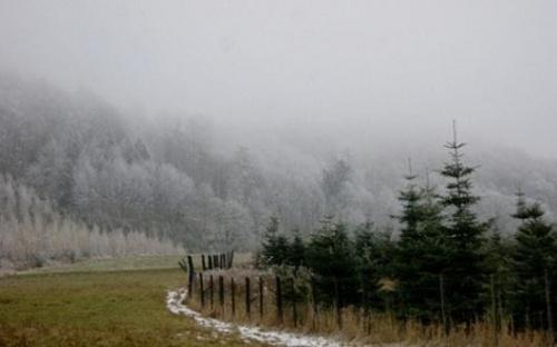 #zima #las #krajobraz #góry