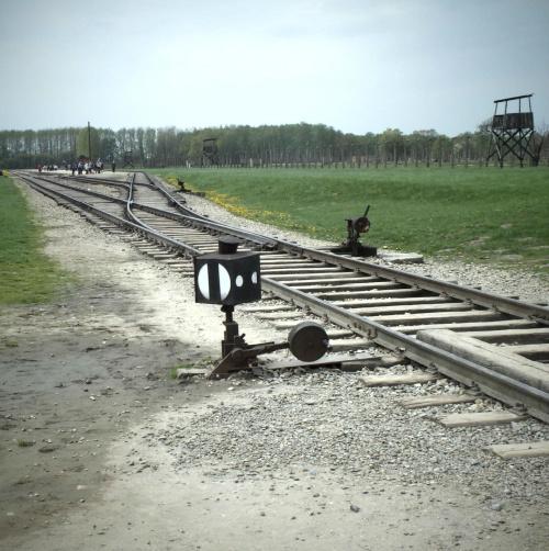 Tory prowadzące do nikąd.. #AuschwitzBirkenau #Oświęcim #plener #tory