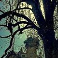 Park Grodowy #Sopot #park