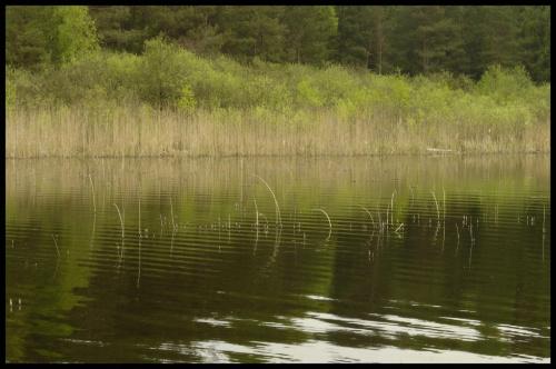 images65.fotosik.pl/913/1d9fbc51a2836fc7med.jpg